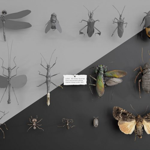 scAnt_insects_rendred_textured-scaled